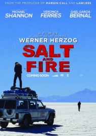 salt-and-fire