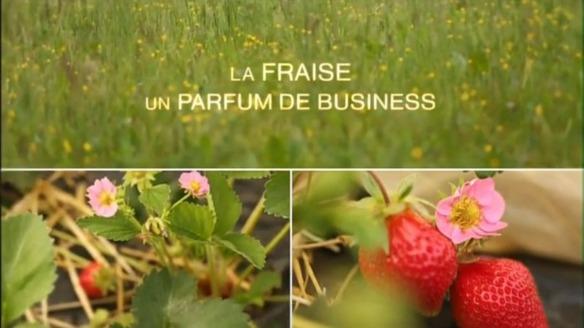 La fraise, un parfum de business