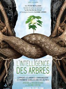 intelligence-des-arbres